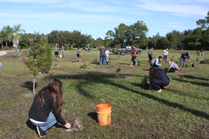 SCF Green Team and Trekkers install the plantings in February.