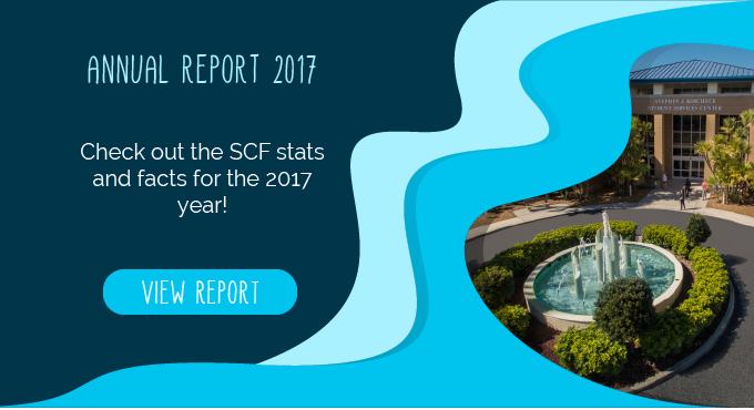2017 SCF Annual Report