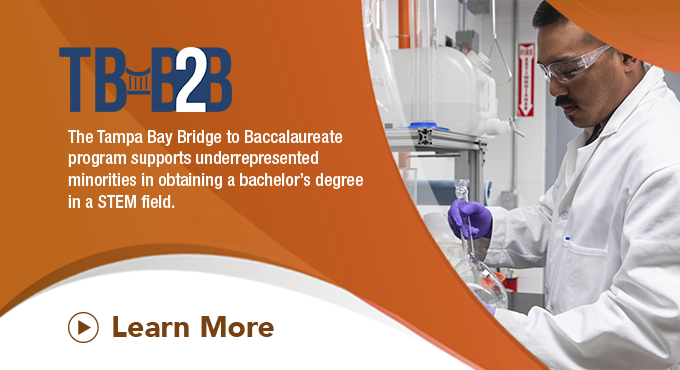 Louis Stokes Alliance for Minority Participation (LSAMP) -- Tampa Bay Bridge to Baccalaureate Program