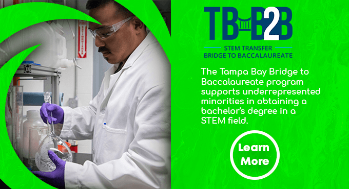 Louis Stokes Alliance for Minority Participation (LSAMP) -- Tampa Bay Bridge to Baccalaureate Program TBB2B - Learn More