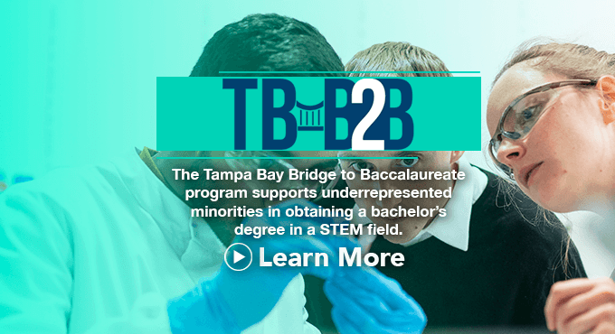 Louis Stokes Alliance for Minority Participation (LSAMP) -- Tampa Bay Bridge to Baccalaureate Program TBB2B